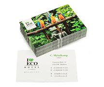 Cartes de visite écologiques