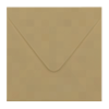 Inclusief kraft bruin enveloppen